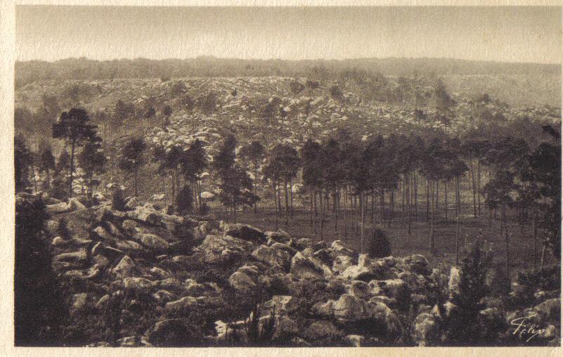 gorges apremont fontainebleau XXè carte postale