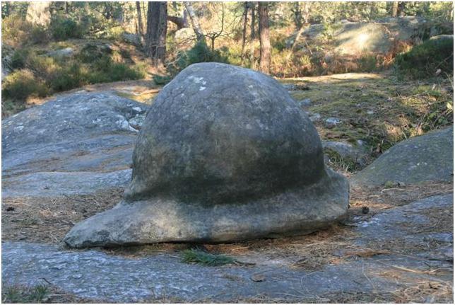la nouvelle casquette